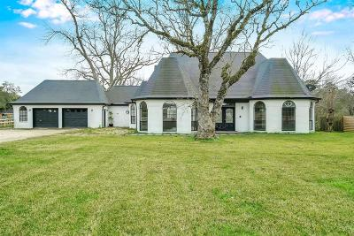 Tomball Single Family Home For Sale: 10715 Hufsmith Road
