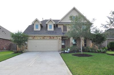 League City Single Family Home For Sale: 2212 Summit Pass Lane