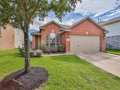 Katy Single Family Home For Sale: 20102 Parkstone Bend Lane