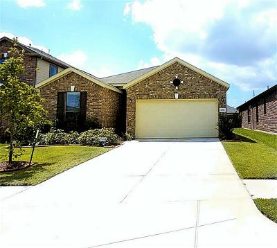 Katy Single Family Home For Sale: 22503 Bellwick Ridge Lane