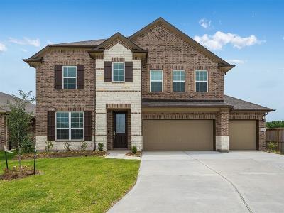 Houston Single Family Home For Sale: 12615 Fernandez Falls Court
