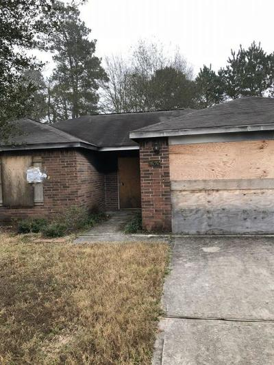 Conroe Single Family Home For Sale: 16282 Long Valley Court