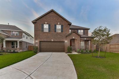 Pearland Single Family Home For Sale: 14101 Spring Birch Lane