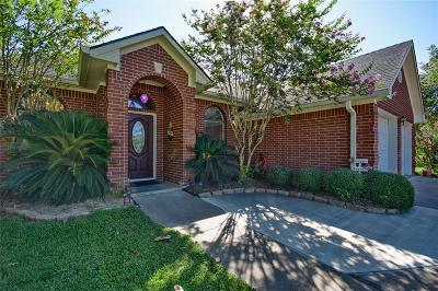 Bellville Single Family Home For Sale: 303 Briar Ridge Drive