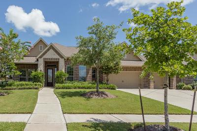 Fulshear Single Family Home For Sale: 30602 Sethora Hill Way