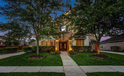 Houston Single Family Home For Sale: 6218 Alameda Point Lane