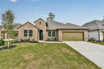 Spring Single Family Home For Sale: 27700 Vivace Drive