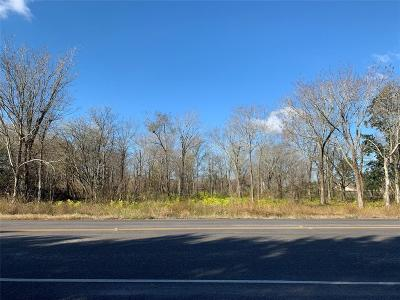 Pearland Residential Lots & Land For Sale: 16624 McLean Road