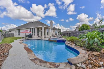 League City Single Family Home For Sale: 741 Mercer Falls Lane