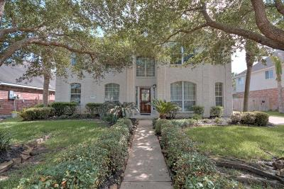 Pearland Single Family Home For Sale: 11604 Bay Ledge Drive