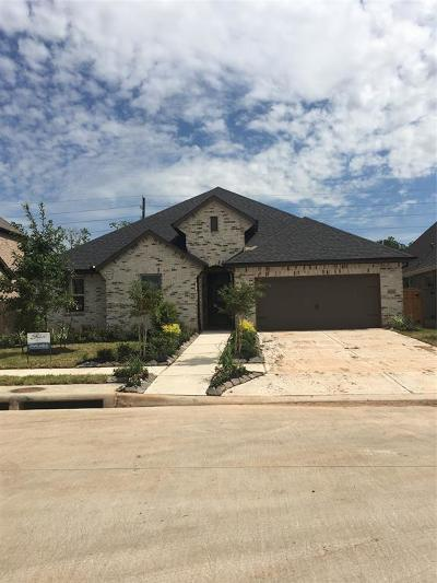 Missouri City Single Family Home For Sale: 10223 Deerpark Drive