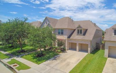Shadow Creek Ranch Single Family Home For Sale: 13805 Lakewater Drive