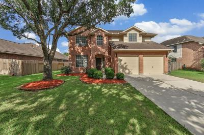 New Territory Single Family Home For Sale: 919 Presley Way