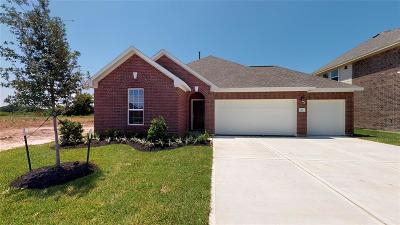 Alvin Single Family Home For Sale: 317 Burgundy Drive