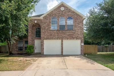 Houston Single Family Home For Sale: 17219 Pleasant Lily Court