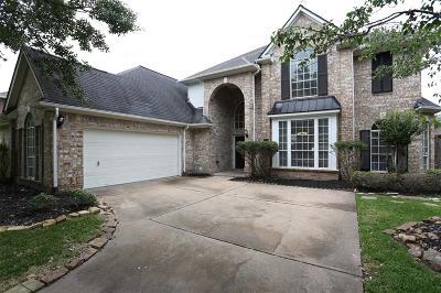Katy Single Family Home For Sale: 22118 Haden Park Drive