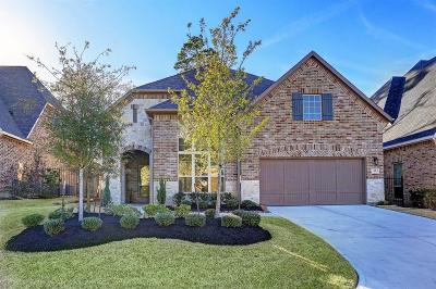 Tomball, Tomball North Rental For Rent: 55 Twin Ponds Place