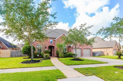 Sugar land Single Family Home For Sale: 5110 Field Briar Lane