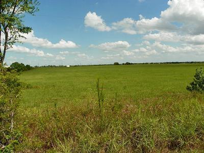 Farm & Ranch For Sale: 302 Kersten Road