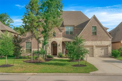 Montgomery TX Single Family Home For Sale: $525,000
