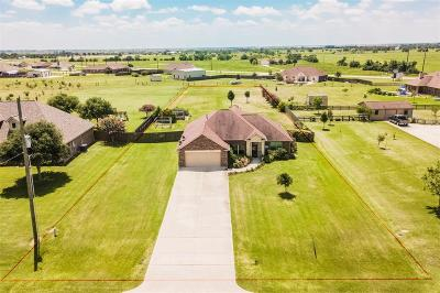 Sealy Single Family Home For Sale: 5364 Colony Drive