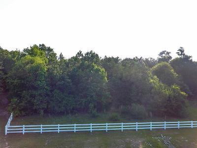 Montgomery Residential Lots & Land For Sale: 8507 Majestic Lake Court