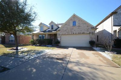 Katy Single Family Home For Sale: 4915 Vintage Grove Court