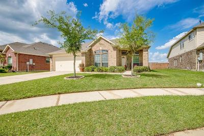 Texas City Single Family Home For Sale: 11030 Edgebrook Dr