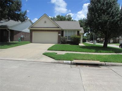 Katy Single Family Home For Sale: 2902 Amber Cliff Drive