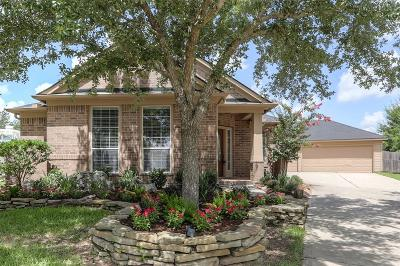 Katy Single Family Home For Sale: 28246 Crossprairie Drive