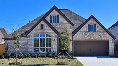 Tomball Single Family Home For Sale: 25130 Pinebrook Grove Lane