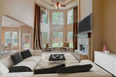 Montgomery Single Family Home For Sale: 115 Monarch Park Drive