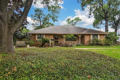 Houston Single Family Home For Sale: 10607 Shadow Wood Drive