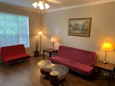 Houston Condo/Townhouse For Sale: 2255 Braeswood Park Drive #138