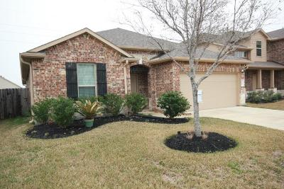 Katy Single Family Home For Sale: 23802 San Barria Drive