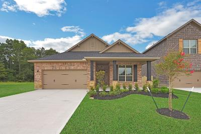 Single Family Home For Sale: 9811 Sweet Flag Court
