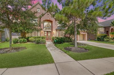 Katy Single Family Home For Sale: 4702 Payton Chase Lane