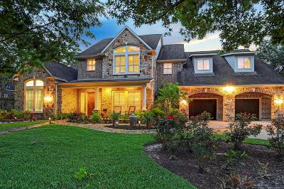 Houston Single Family Home For Sale: 439 W Gaywood Drive