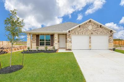 Texas City Single Family Home For Sale: 8613 Voyager Drive