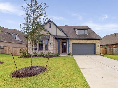 Lakes Of Savannah Single Family Home For Sale: 4822 Gingerwood Trace Ln