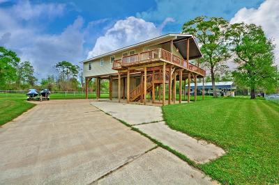 Houston Single Family Home For Sale: 21722 Rio Villa Drive Drive S