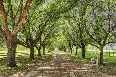 Richmond Single Family Home For Sale: 5436 Fm 723 Road
