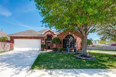 Galveston County, Harris County Single Family Home For Sale: 7102 Fountain Lilly Drive