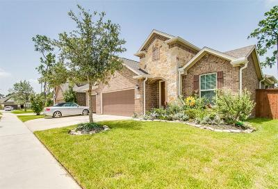 Houston Single Family Home For Sale: 17121 Numid Lake Court