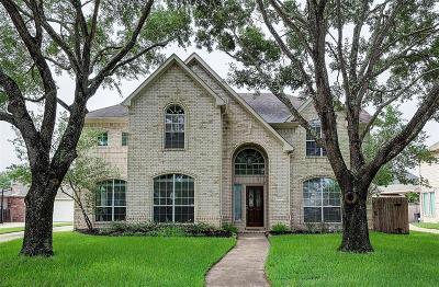 Houston Single Family Home For Sale: 18207 Kelley Creek Drive
