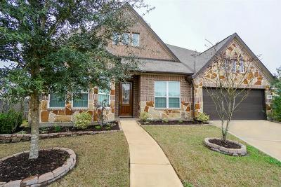 Sugar Land Single Family Home For Sale: 4603 Stoney Ridge Court