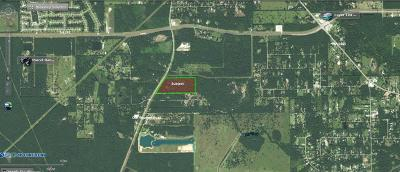 Conroe Farm & Ranch For Sale: Old Houston Road Road