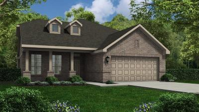 Single Family Home For Sale: 3538 Dancing Daisy Lane