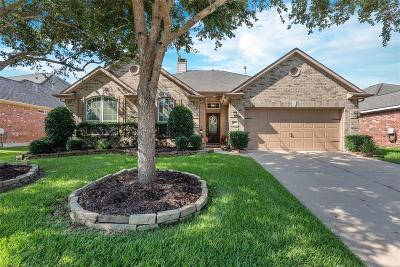 League City Single Family Home For Sale: 6111 Castle Peak Lane