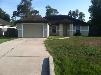 Conroe Single Family Home For Sale: 16381 Ryan Guinn Way,